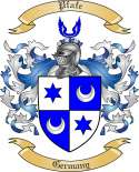 Pfafe Family Crest from Germany