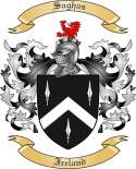 Saghas Family Coat of Arms from Ireland