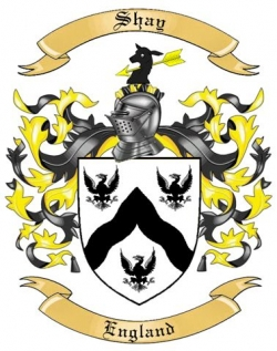 shay family crest from england by the tree maker