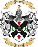 Tailyour Family Coat of Arms from England