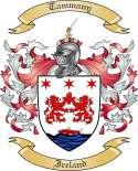 Tammany Family Coat of Arms from Ireland