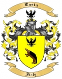 Tasin Family Coat of Arms from Italy