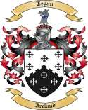 Tegan Family Crest from Ireland