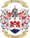 Timmany Family Crest from Ireland