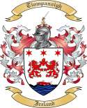 Tiompanaigh Family Crest from Ireland