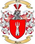 Toli Family Coat of Arms from Spain