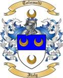 Tolumelli Family Coat of Arms from Italy