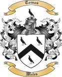 Tomas Family Coat of Arms from Wales