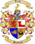 Tosh Family Coat of Arms from Scotland