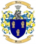 Vain Family Crest from Wales