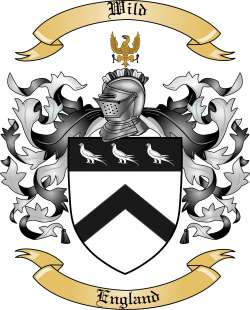 Wild Family Coat of Arms from England