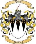 Yung Family Coat of Arms from Scotland