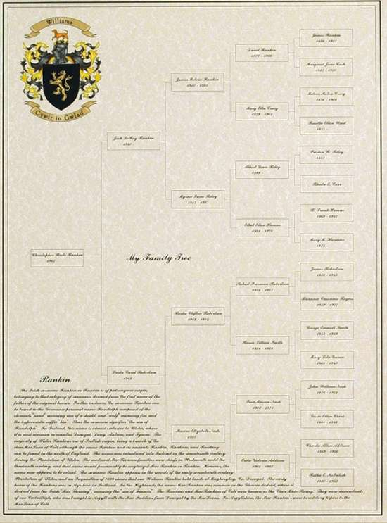 Customized 5-Generation Picture of a Family Tree with Coat of Arms & Surname Origin
