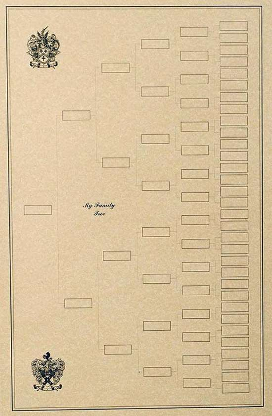 6-Gen. Blank Sample of a Family Tree with Decorative Artwork