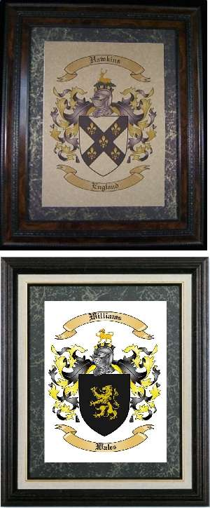 Family Coat of Arms Picture with Family Crest Symbol