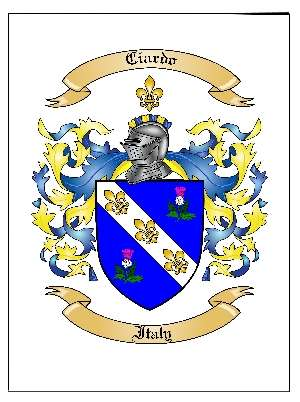 Family Coat of Arms / Family Crest in Large Print {Poster}