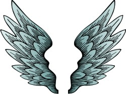 Advanced Wing 3 Clip Art