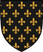 Shield Layout 9 with Semme Fleur-de-lis